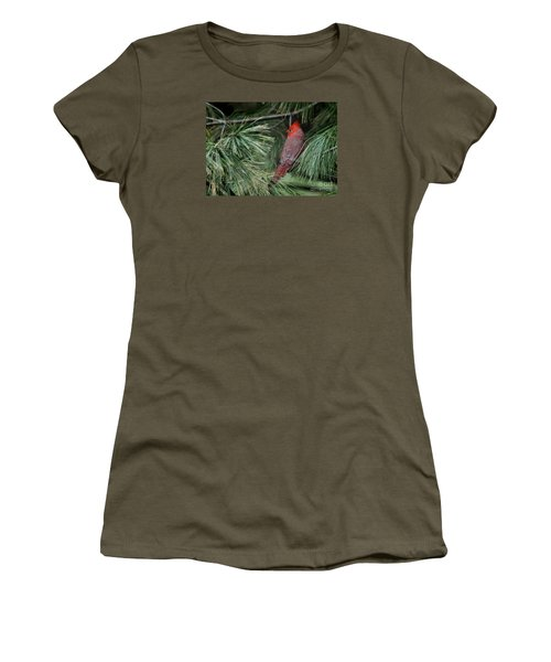 Women's T-Shirt (Junior Cut) featuring the photograph Red Cardinal In Green Pine by Nava Thompson