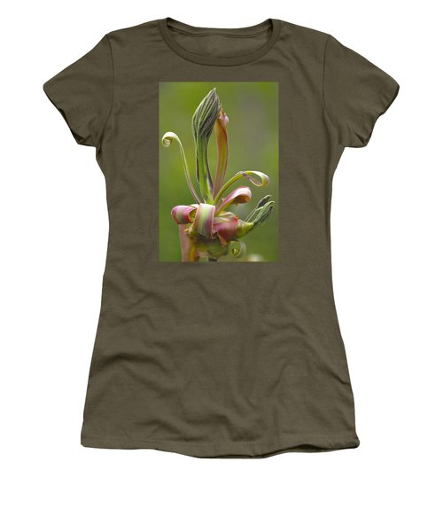 Shagbark Hickory Leaf And Flower Bud Women's T-Shirt (Athletic Fit)