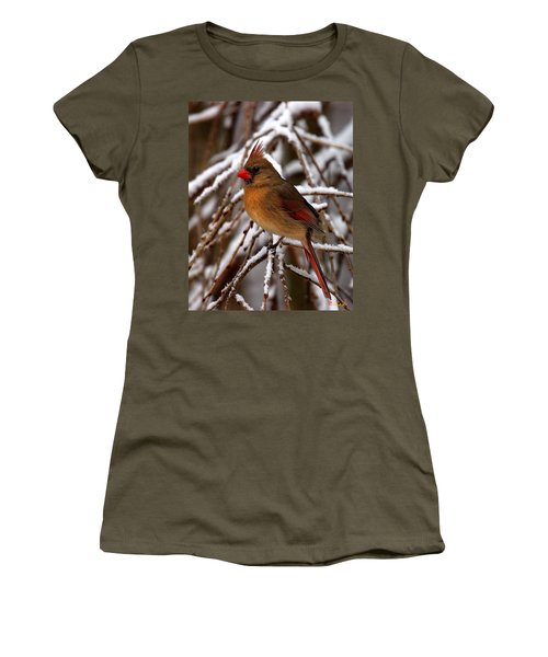 Snowbirds--cardinal Dsb025 Women's T-Shirt (Athletic Fit)