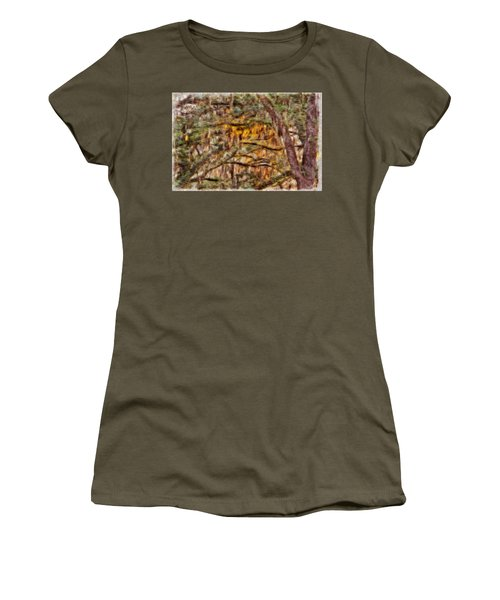 Spanish Moss And Sunset Women's T-Shirt (Athletic Fit)