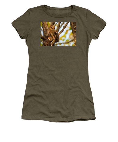 Women's T-Shirt (Junior Cut) featuring the photograph Squirrel On High by Cheryl Baxter