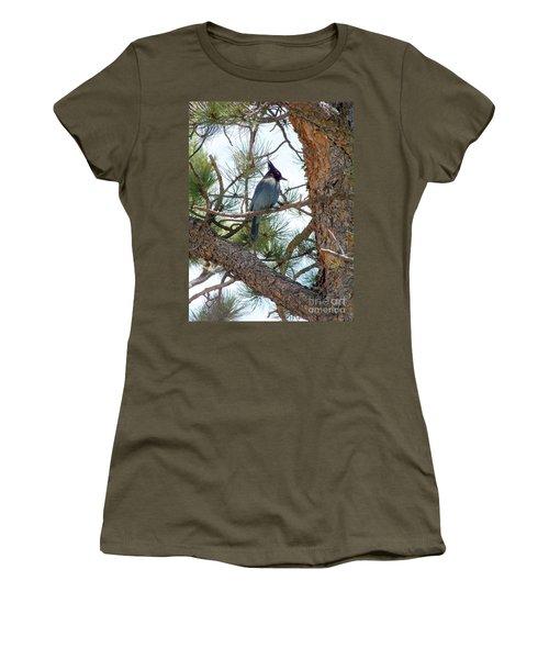 Stellar's Jay Women's T-Shirt