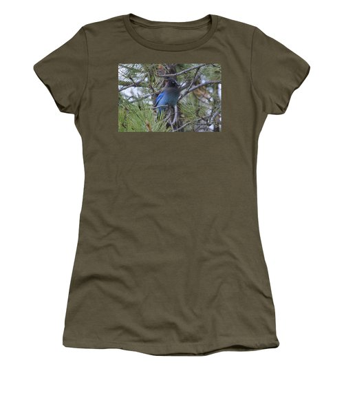 Stellar's Jay In Profile Women's T-Shirt
