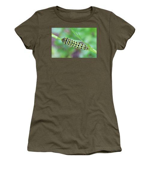 Swallowtail Caterpillar On Parsley Women's T-Shirt