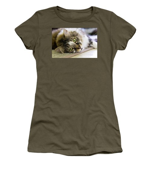 Tabby Cat Looking At Camera Women's T-Shirt (Athletic Fit)