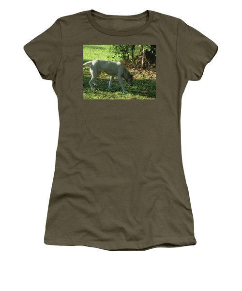 Women's T-Shirt (Junior Cut) featuring the photograph The Tracker by Maria Urso