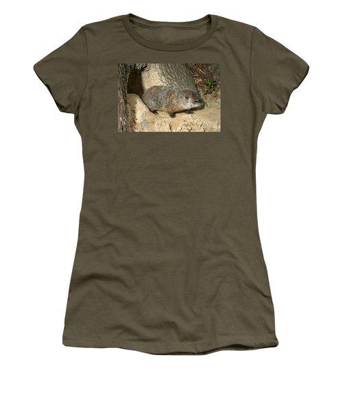 Woodchuck Women's T-Shirt (Junior Cut) by Ted Kinsman