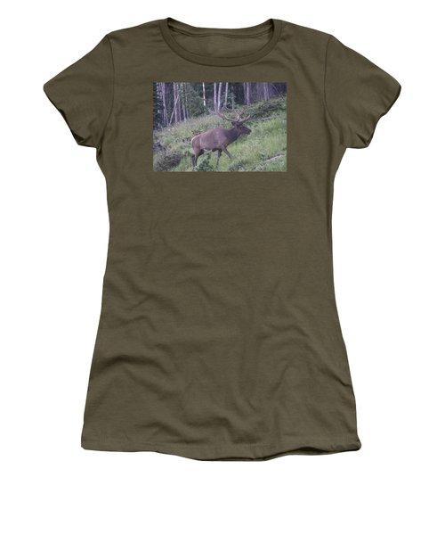 Bull Elk Rmnp Co Women's T-Shirt