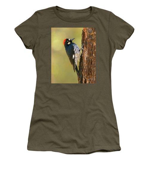 Acorn Woodpecker Women's T-Shirt (Junior Cut) by Doug Herr