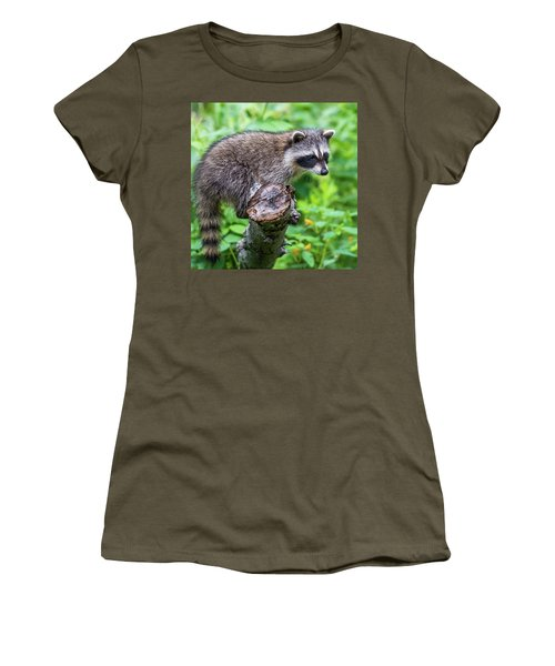Women's T-Shirt (Junior Cut) featuring the photograph Baby Racoon by Paul Freidlund