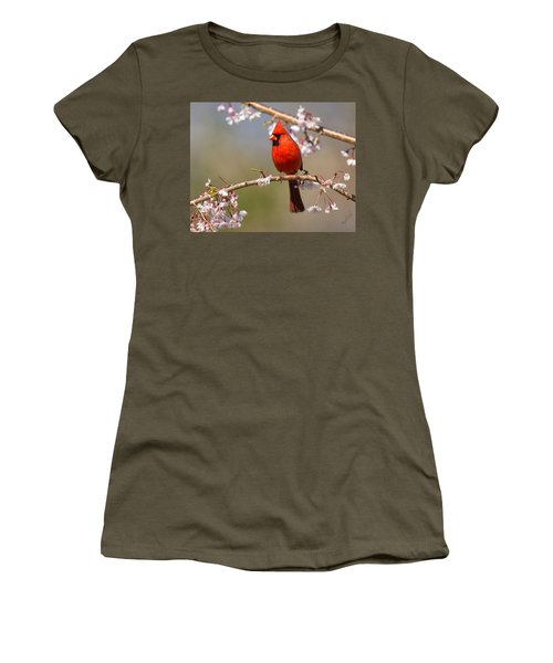 Women's T-Shirt featuring the photograph Cardinal In Cherry by Angel Cher