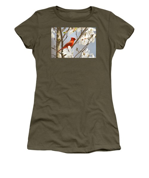 Women's T-Shirt featuring the photograph Cardinal In Magnolia by Angel Cher
