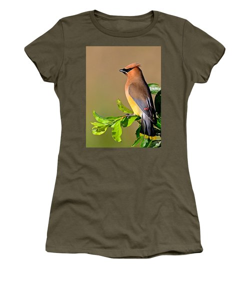 Women's T-Shirt (Athletic Fit) featuring the photograph Cedar Waxwing by Rodney Campbell