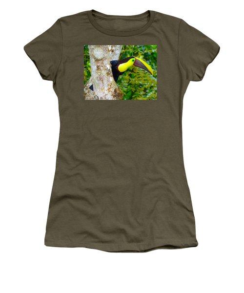 Chestnut-mandibled Toucan Women's T-Shirt