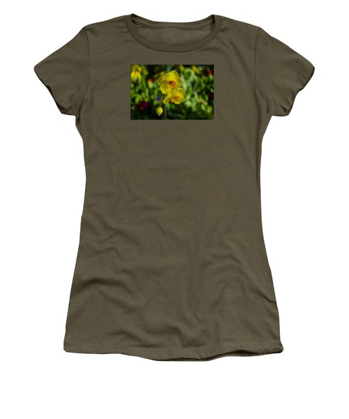 Daffodils Women's T-Shirt