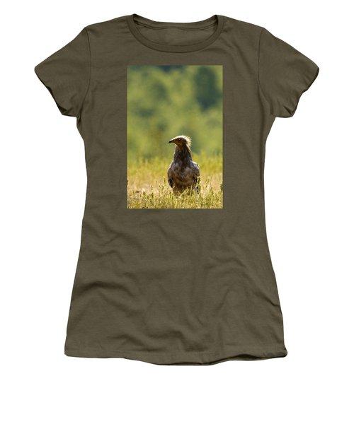 Egyptain Vulture  Women's T-Shirt