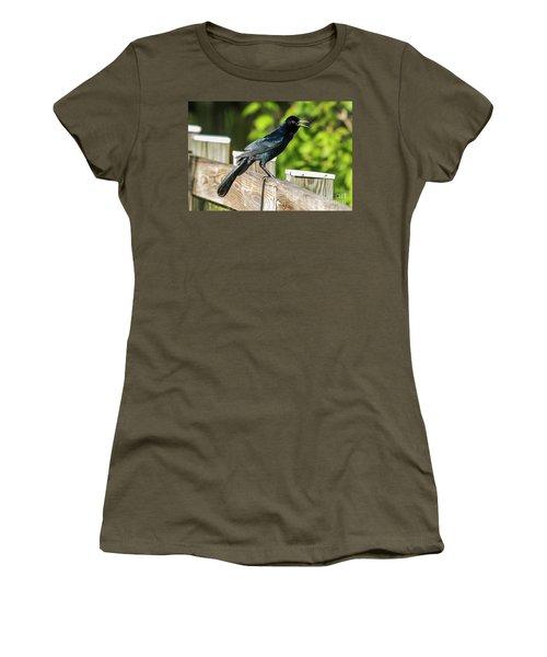 Grackle Women's T-Shirt