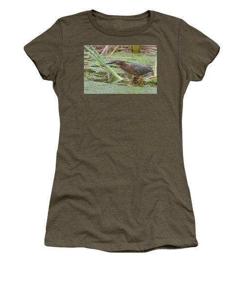 Green Heron Women's T-Shirt (Junior Cut) by Doug Herr