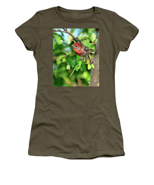 Inquisitive Women's T-Shirt (Athletic Fit)