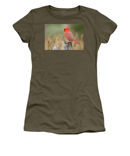 Women's T-Shirt featuring the photograph Male Cardinal by David Waldrop