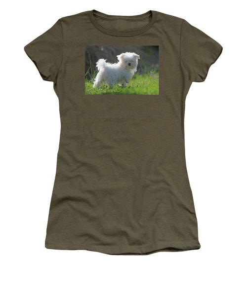 Maltese Women's T-Shirt (Athletic Fit)