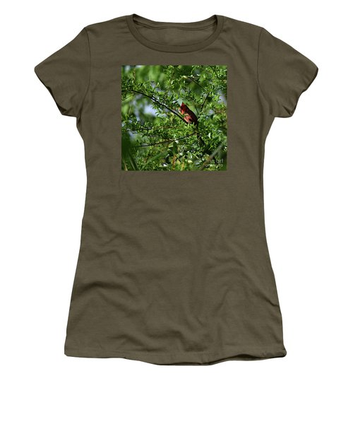 Women's T-Shirt (Junior Cut) featuring the photograph Mr Red by Skip Willits