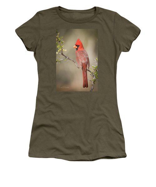 Northern Cardinal Cfh17765 Women's T-Shirt