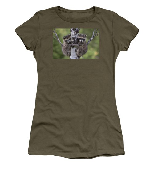 Women's T-Shirt featuring the photograph Raccoon Two Babies Climbing Tree North by Tim Fitzharris