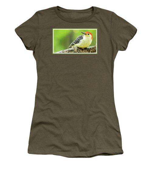 Red Bellied Woodpecker, Male, Animal Portrait Women's T-Shirt (Junior Cut) by A Gurmankin
