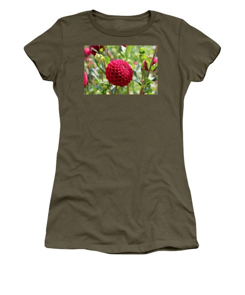 Red  Dahlia Women's T-Shirt