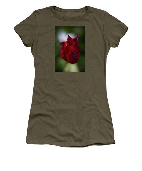 Red Rose Women's T-Shirt (Junior Cut) by Andre Faubert