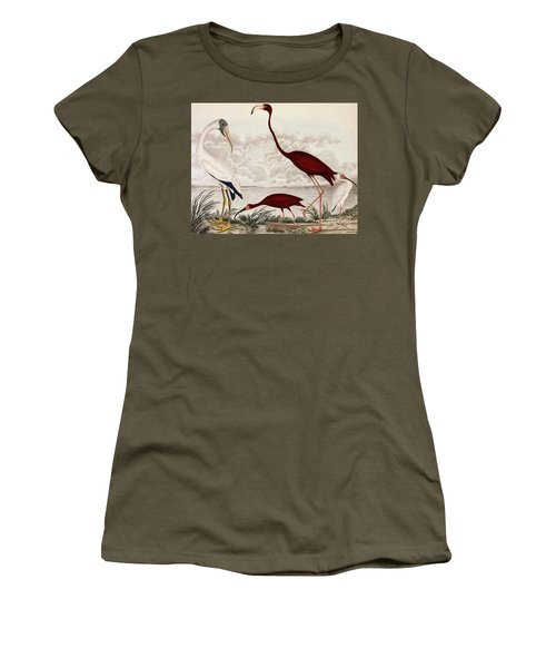 Wood Ibis, Scarlet Flamingo, White Ibis Women's T-Shirt (Athletic Fit)