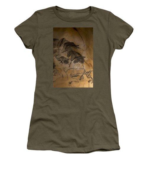 150501p086 Women's T-Shirt (Junior Cut) by Arterra Picture Library