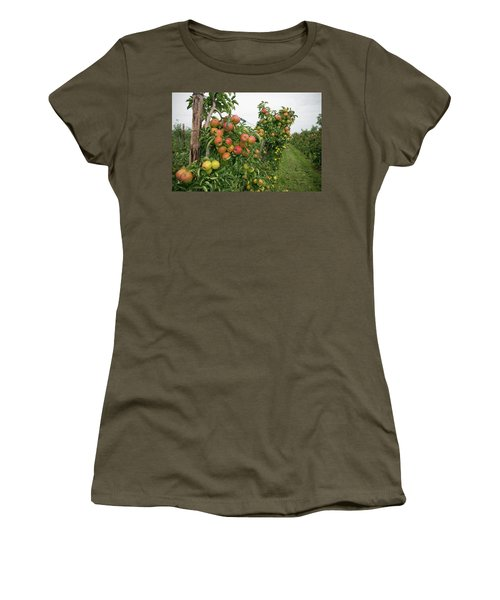 Apple Orchard Women's T-Shirt (Junior Cut) by Hans Engbers