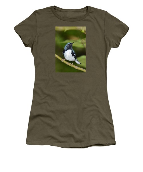 Black-throated Blue Women's T-Shirt (Athletic Fit)