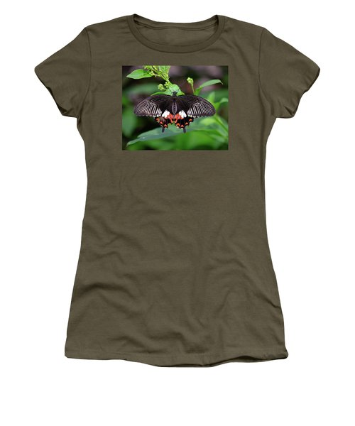 Great Mormon Butterfly Women's T-Shirt (Junior Cut) by Ronda Ryan