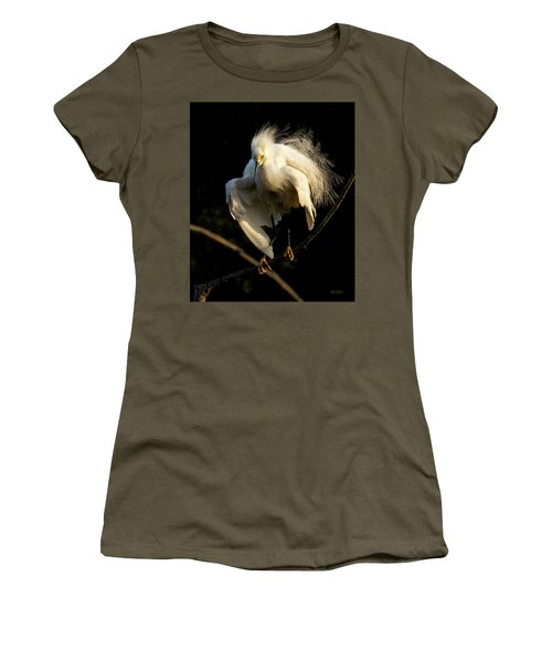 Snowy Beauty Women's T-Shirt