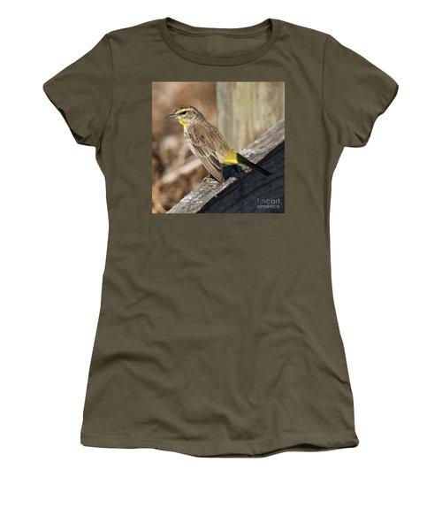 Warbler Women's T-Shirt