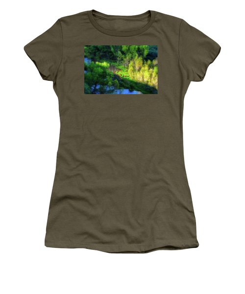 3 Horses Grazing On The Bank Of The Verde River Women's T-Shirt