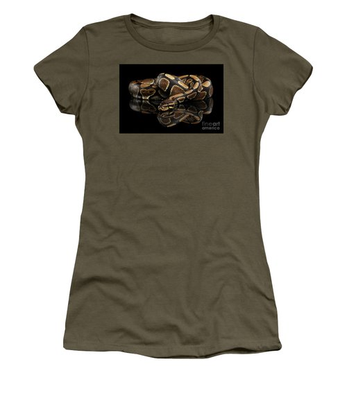 Ball Or Royal Python Snake On Isolated Black Background Women's T-Shirt