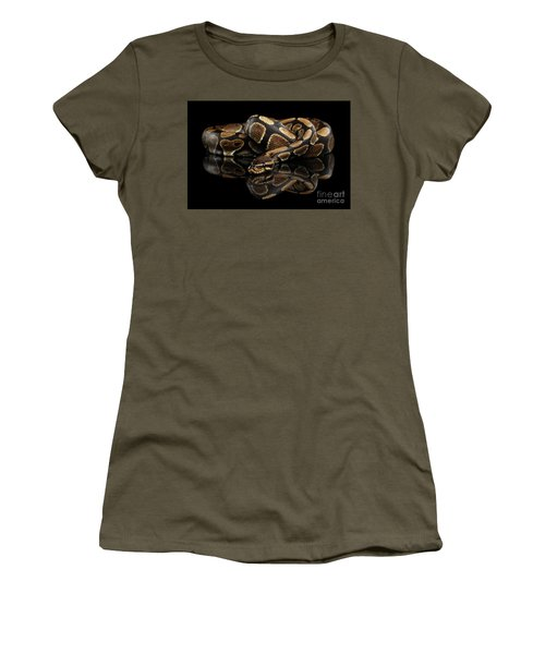 Ball Or Royal Python Snake On Isolated Black Background Women's T-Shirt (Athletic Fit)