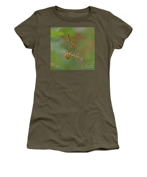Band-winged Meadowhawk Women's T-Shirt (Athletic Fit)