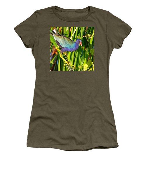 Purple Gallinule Women's T-Shirt