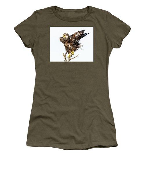 Bald Eagle Women's T-Shirt