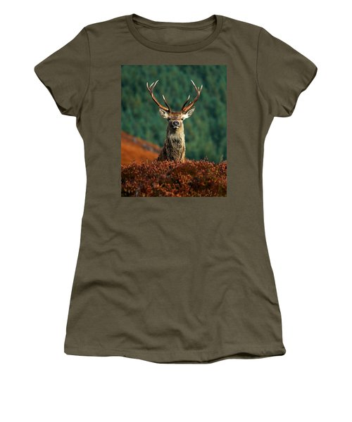 Red Deer Stag Women's T-Shirt (Athletic Fit)
