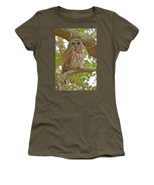 A Barred Owl Women's T-Shirt