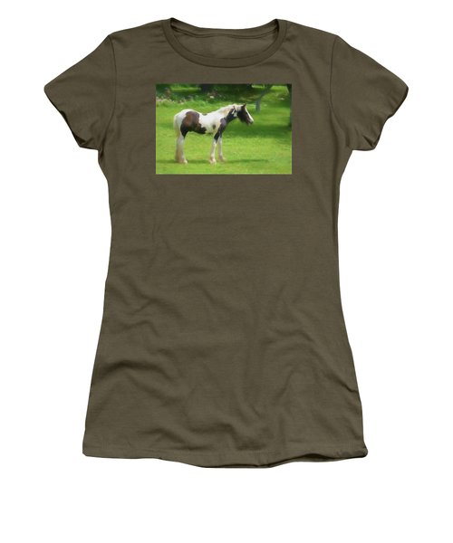A Beautiful Young Gypsy Vanner Standing In The Pasture Women's T-Shirt