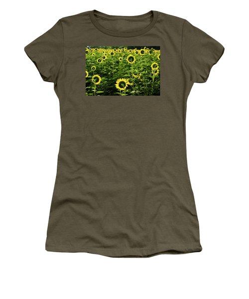 A Flock Of Blooming Sunflowers Women's T-Shirt
