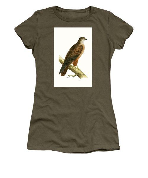 African Buzzard Women's T-Shirt (Junior Cut) by English School