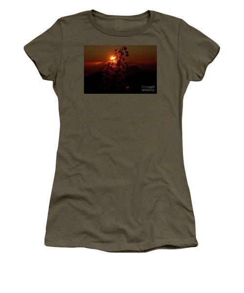 Ahinahina - Silversword - Argyroxiphium Sandwicense - Sunrise Women's T-Shirt (Junior Cut) by Sharon Mau